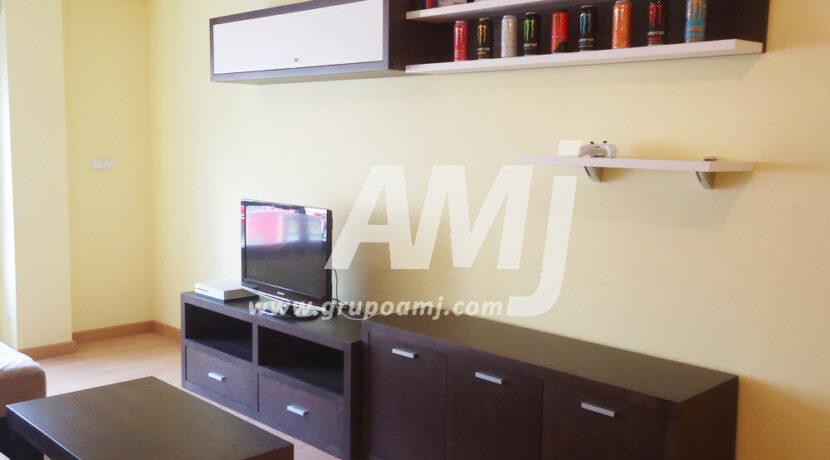 amj-ref-00253-003