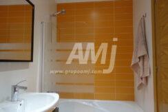 amj-ref-00255-013