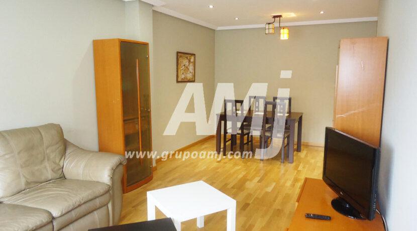 amj-ref-00255-021