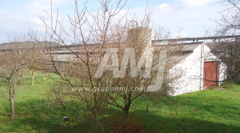 amj-ref-259-009