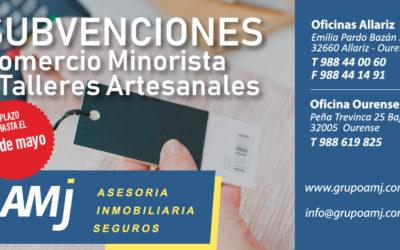 Subvenciones Comercio Minorista y Talleres Artesanales